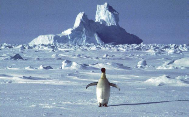 Por primera vez temperaturas de -98 grados en la Antártida
