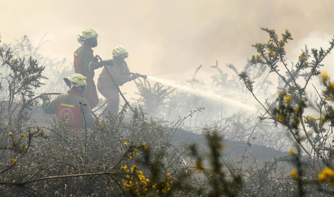 Varios bomberos, en pleno esfuerzo por apagar las llamas. /Lobo Altuna